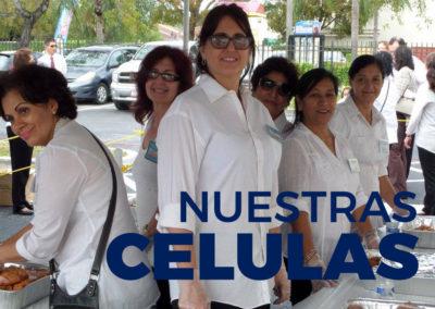 Ministerio Celular
